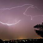 Purple Lightning by Renée Van Kraanen