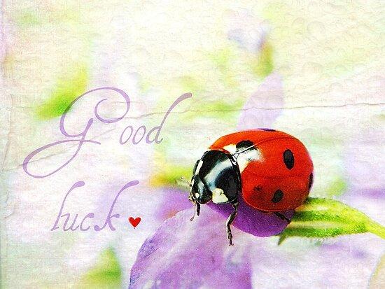 Good luck by Yool