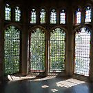Lovely Windows by Clare McClelland