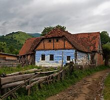 A House in the Country by Yair Karelic