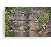 Grand Scale - Dunn's Swamp NSW Australia Canvas Print