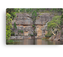 Grand Scale - Dunn's Swamp NSW Australia Canvas Print