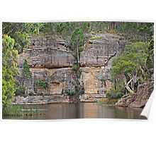 Grand Scale - Dunn's Swamp NSW Australia Poster