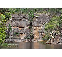 Grand Scale - Dunn's Swamp NSW Australia Photographic Print