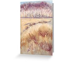 Grasses on Strensall Common Greeting Card