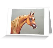"""Arabian horse study"" Greeting Card"