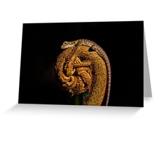 Baby Water Dragon (Physignathus lesueurii lesueurii) on King Fern (Angiopteris evecta) Greeting Card
