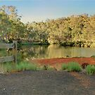 Blackwood Morning, Bridgetown, Western Australia by Elaine Teague
