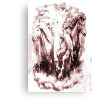 White Equines. Canvas Print