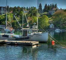 Indian Harbour Nova Scotia by Roxane Bay