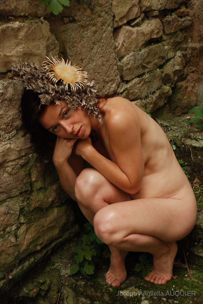 La belle cardabelle de l'Aveyron by Auquier