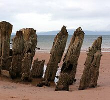 North Beach Wreck by Paul Messenger