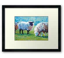 Summer Light - Acrylic Painting of Sheep in Sun Light Framed Print
