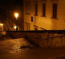 Walking Stairs At Night In Prague by sceneryphotosto