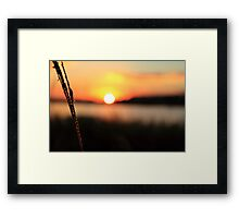 Raw Sunset Framed Print