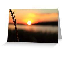 Raw Sunset Greeting Card