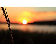 Raw Sunset Photographic Print
