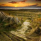 Sunset Steps by Brian Kerr