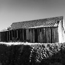 Rickety old seaside shed by sarnia2