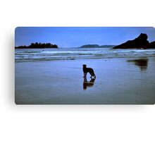 The surfers devoted friend Canvas Print