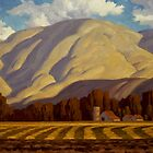 Chandler Farm by Rob Colvin