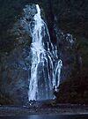 Bowen Falls, Milford Sound, NZ by Odille Esmonde-Morgan