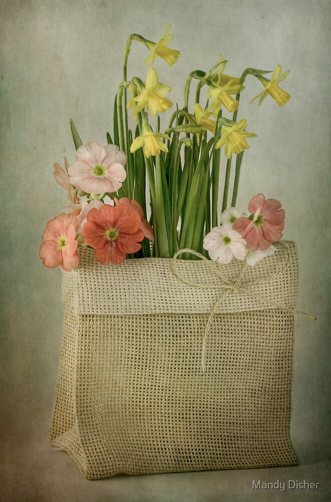 Bagful of Spring by Mandy Disher