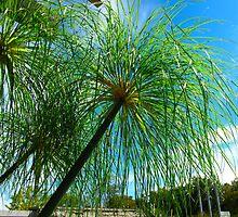 Green Tassle Trees by MarianBendeth