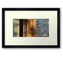 Shadowbug Framed Print