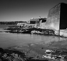 Charles Fort by Paul McSherry