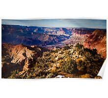 Desert Viewpoint Poster