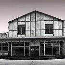 pano: the street of empty shops by carol brandt