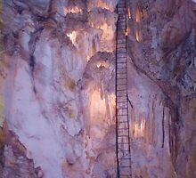 Jenolan Caves Ladder by Michael John