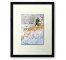 Peaceful Snow Scene Framed Print
