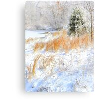 Peaceful Snow Scene Metal Print