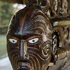 Rotorua Waka by Werner Padarin