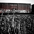Train Yard by Lady  Dezine