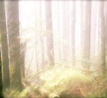 Mystic Forest by JessiebeePhotos