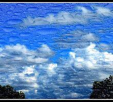Tears in the Sky by blackrose25
