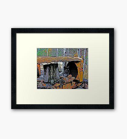 Down on the Farm 74 Framed Print