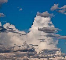 Approaching Storm Clouds - Alaska  by Melissa Seaback