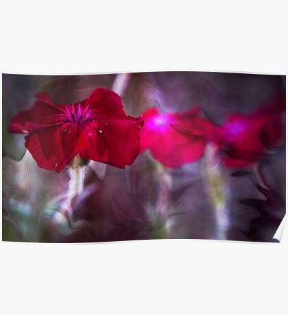 Red Flower Art Poster
