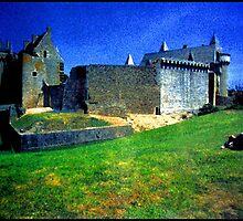 Chateau de Suscinio by Franz Roth