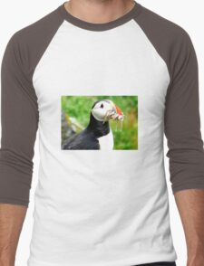Puffin Men's Baseball ¾ T-Shirt