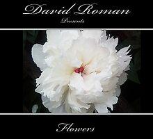New Book  by DavidROMAN