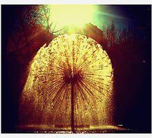 Kings Cross Fountain, Sydney by jphenfrey