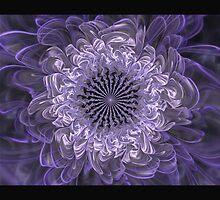 Blue Cornflower by Pam Amos