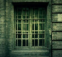 Window by MickP