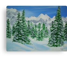 Winter on The Mountains Canvas Print