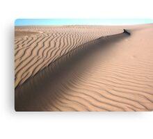 Oceano Dunes Snake Canvas Print